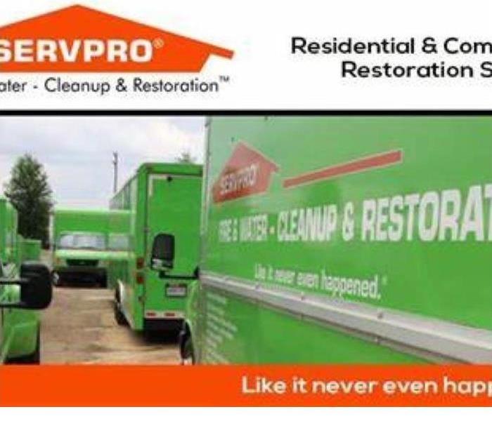 SERVPRO Green trucks lined up.