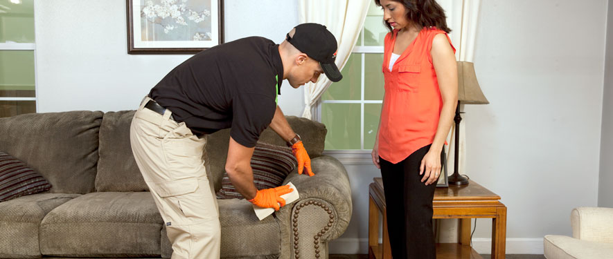 Van Nuys, CA carpet upholstery cleaning